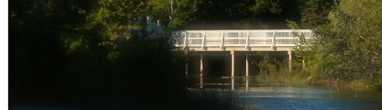 bridge header.jpg
