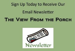 newsletter widget 300_220.jpg